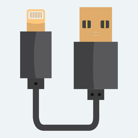 solid color: USB cable icon. Realistic Flat and solid color style design.