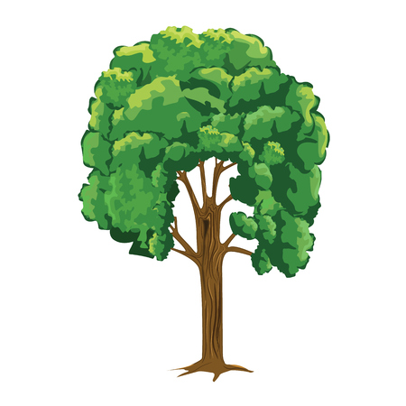 Tree with cartoon style but with more detailed. Flat and solid color vector. Illustration