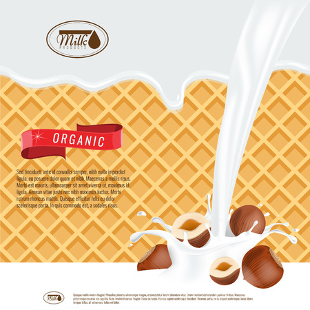 Vector realistic illustration of milk splash with hazelnuts. Milk melting with wafers background. Ready design for ads and package design vector. Illustration