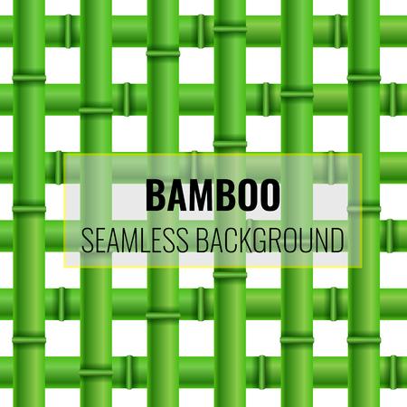Green Bamboo weaving seamless pattern background. Vector Texture illustration.