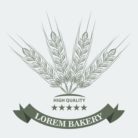 Wheat, stars and ribbon with sketch line art style for Bakery concept. Vector illustration.