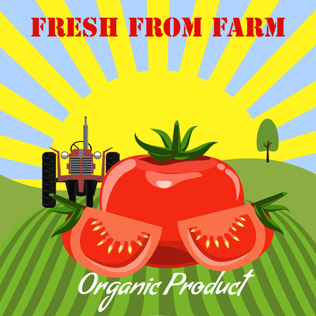 Tomato mockup in farm landscape background. Label design for tomato products. Flat and solid color style vector illustration.
