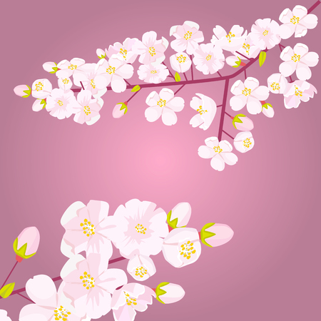 Pink Cherry blossom on branch with bud or shoots. Empty copyspace with floral border. Flat color style vector illustration.