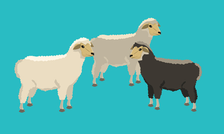 Group of black and white sheeps with solid and flat color design.