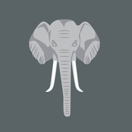 African elephant head with front view. Vector illustration. 向量圖像