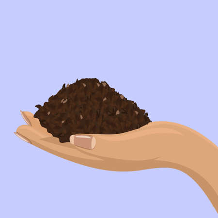 Soil in female hand for your design. Back view. Vector illustration.