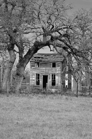 abandoned farmhouse abandoned farmhouse: Abandoned farmhouse framed by dead trees in the country