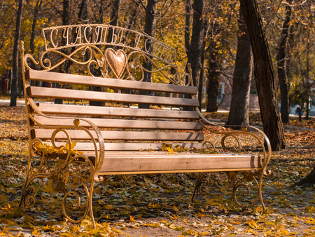 A wooden and metal bench is located in a park way. It is autumn season and leaves are falling to the ground. Fall mood. With the enscryption - There is happiness.