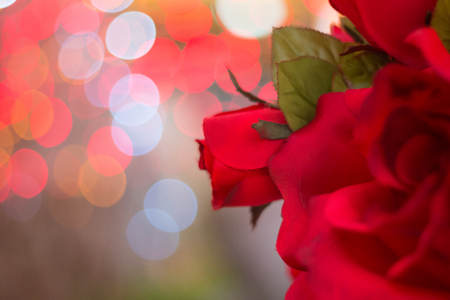 red rose bokeh: beautiful dry red rose on bubble with blur bokeh background
