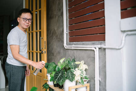 Portrait of middle-aged Asian man spraying green plants with pure water on the balcony front home and looking at camera. Mature Man Caring for House Plant.Home gardening, planting concept.Home hobies.