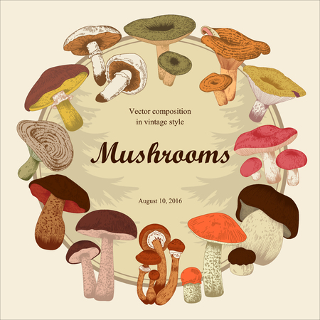 Mushrooms. Botany. Engraving. Vector vintage illustration. Round frame.