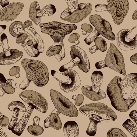 Mushrooms. Vector seamless background. Botany. Cooking. Engraving. Floral pattern. Nature. Food. Forest. Paper.