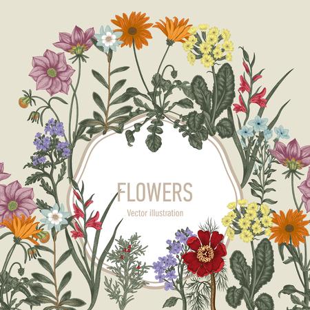Sommerblumen. Wildblumen. Vektor Vintage Postkarte. Gemüsemuster. Botanisches Thema. Vektorgrafik