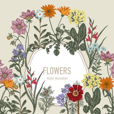 Summer flowers. Wildflowers. Vector Vintage postcard. Vegetable pattern. Botanical theme. Vettoriali