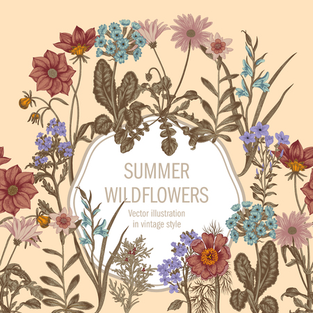 Summer flowers. Wildflowers. Vector Vintage postcard. Vegetable pattern. Botanical theme.