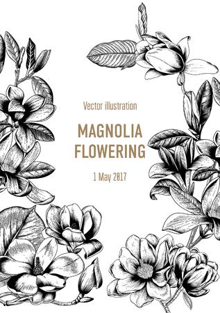 Magnolie. Blumen. Blüte von Bäumen. Frühling. Vektor Vintage Postkarte. Illustration mit Pflanzen. Botanik.
