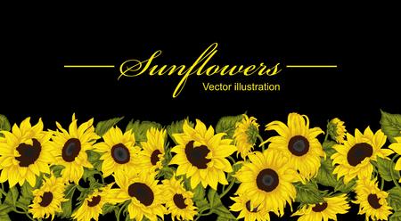 Sunflowers. Vector illustration in vintage style. Seamless background. 免版税图像