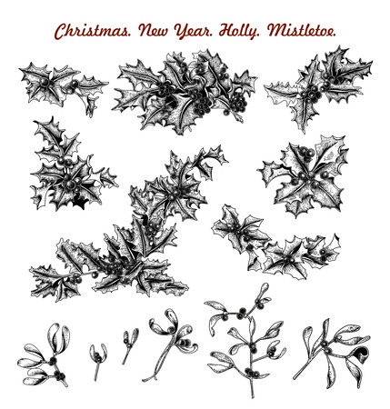 Mistletoe and holly. Christmas and New Year. Vector illustration in vintage style with floral pattern. 免版税图像 - 115317252