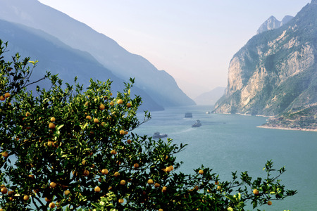 xiling gorge: Xiling Gorge in Yichang city, Hubei Province, the three Gorges reservoir area of Qu Yuans hometown in Zigui County, the Sun was shining reflection Xiajiang, on both sides, Orange fragrance.
