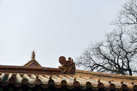 View of traditional Chinese roof tiles