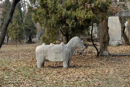 the silence of the world: Qufu konglin stone statues
