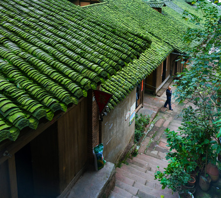 Local houses with green roofs in a village Editorial