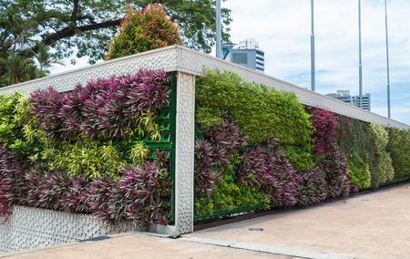 jardines con flores: jardín vertical en el centro de Kuala Lumpur, Malasia.