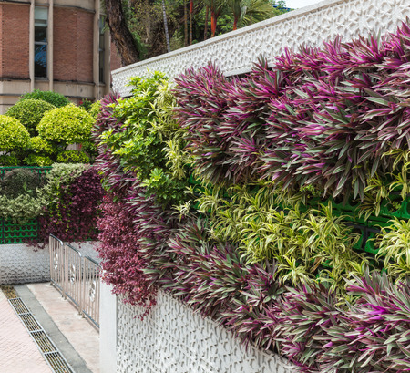 beautiful vertical garden in the center of Kuala Lumpur, Malaysia.