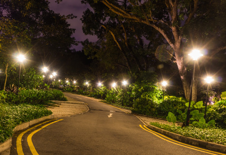 lighting background: decorative night lighting the road in the Botanic Garden of Singapore