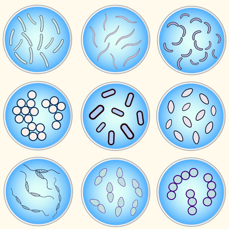 agar: stylized image of different types of bacteria in a petri dish Illustration