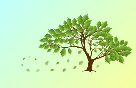 Spring English oak and green falling leaves Illustration