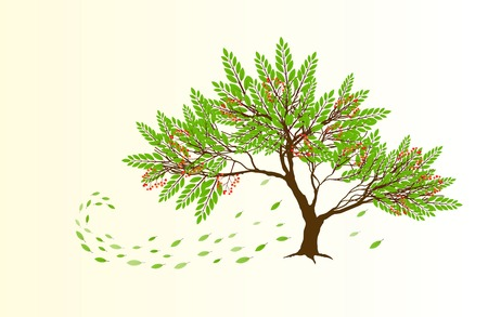 falling leaves: Spring abstract tree with red berries and green falling leaves Illustration