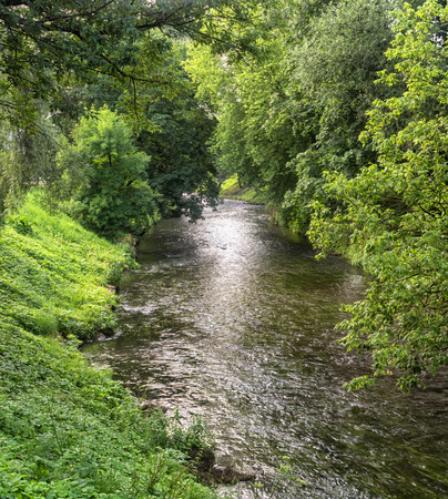 river banks: river banks overgrown with green trees. Vilnius. Lithuania. Stock Photo