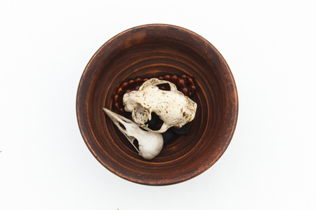clay plate with cat and bird skulls on white. Still life. Pagan symbols. Stok Fotoğraf