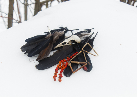 crow feathers, bird skull and rowan beads in the snow. Still life. Pagan, witchcraft symbols.