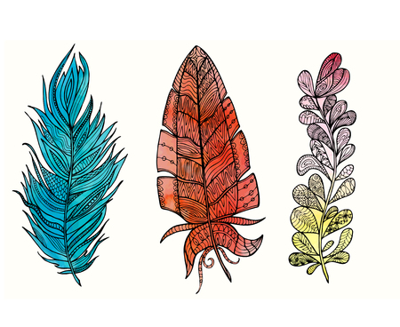 Hand drawn feather set with doodle, floral, vintage elements and watercolor background. Isolated on white. Vector illustration. Illustration
