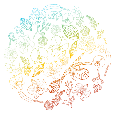 Hand drawn set of orchid flowers and floral elements in circle shape with gradient. Isolated on white. Colored vector illustration.