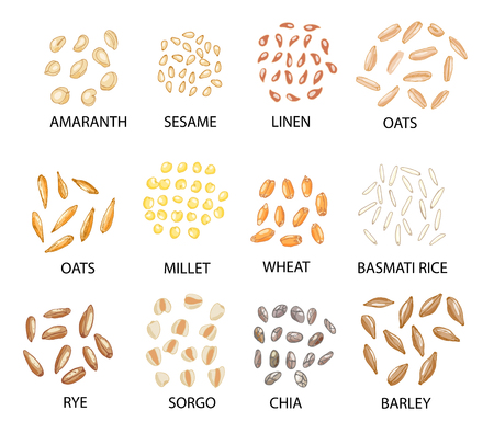 Set of hand drawn colored cereal grains isolated on white.