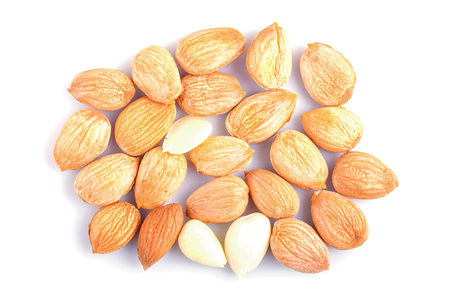 Pile of dried apricot seeds isolated on white Archivio Fotografico