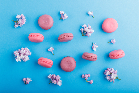 Purple and pink macaron or macaroon cakes with lilac flowers on pastel blue Reklamní fotografie - 124156273