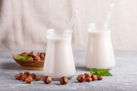 Organic non dairy hazelnut milk in glass and wooden plate with hazelnuts on a gray concrete background. Vegan healthy food concept, close up, side view. Reklamní fotografie - 124399417