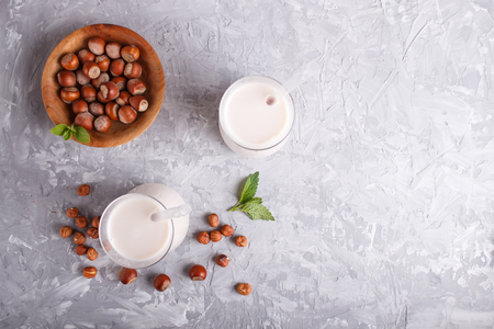 Organic non dairy hazelnut milk in glass and wooden plate with hazelnuts on a gray concrete background. Vegan healthy food concept, flat lay, top view, copy space. Reklamní fotografie - 124399418