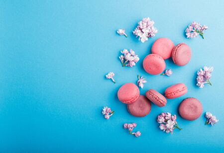 Purple and pink macaron or macaroon cakes with lilac flowers on pastel blue background. Morninig, spring, fashion composition. Flat lay, top view, copy space. Reklamní fotografie
