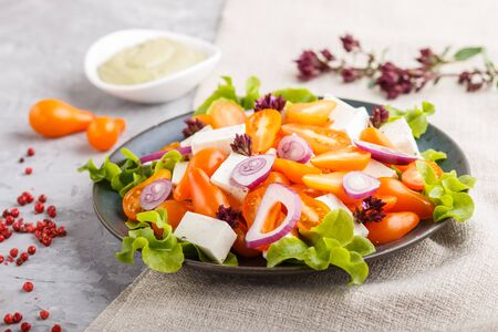 Vegetarian salad with fresh grape tomatoes, feta cheese, lettuce and onion on blue ceramic plate on gray concrete background and linen textile. side view, close up,selective focus. Reklamní fotografie