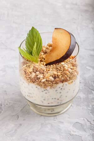 Yoghurt with plum, chia seeds and granola in a glass on gray concrete background. side view, close up. Reklamní fotografie