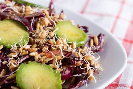 Vegetarian salad of purple cabbage, germinated wheat Фото со стока