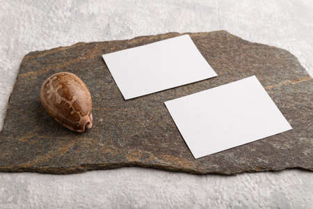 White paper business card, mockup with natural stone and seashell on gray concrete background. Blank, side view, still life, copy space.