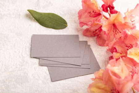 Gray business card with pink azalea flowers on gray concrete background. side view, copy space, mockup, template, spring, summer minimalism concept. Zdjęcie Seryjne