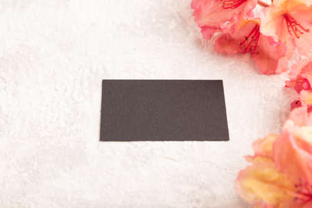 Black business card with pink azalea flowers on gray concrete background. side view, copy space, mockup, template, spring, summer minimalism concept.