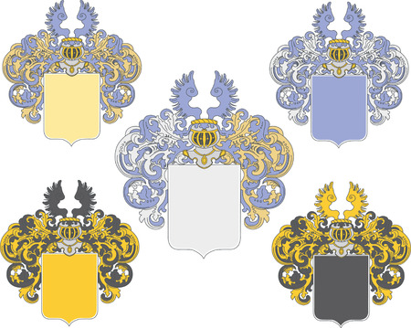 coat of arms in various colors schemes  Vector